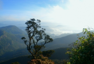 Fantastisk utsikt från Adams Peak