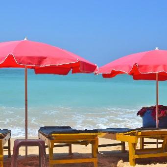 Rundresa Sri Lanka – Best of sommar  ( resan går under rådande omständigheter inte att boka)
