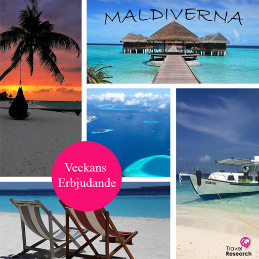 maldiverna_annons3